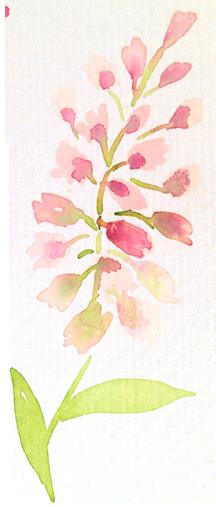 sprigs_pink1